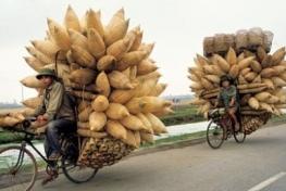 Báo Anh bàn chuyện xe đạp ở Việt Nam